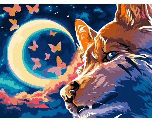 """Картина для раскрашивания по номерам ФРЕЯ """"Ночное небо"""" 40*30см."""